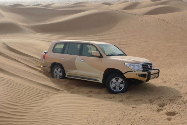 Desert Safari Tour (3)